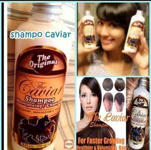 harga shampo kuda terbaru