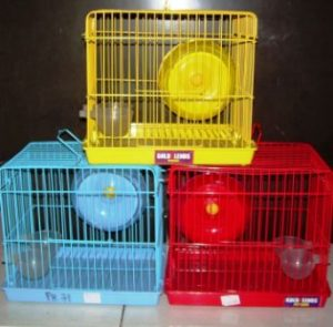 Harga Kandang Hamster Di Jatinegara