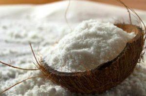 harga tepung kelapa