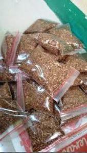 harga tepung kepala udang