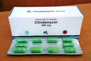 Harga Clindamcyin
