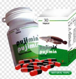 harga pujimin kapsul albumin