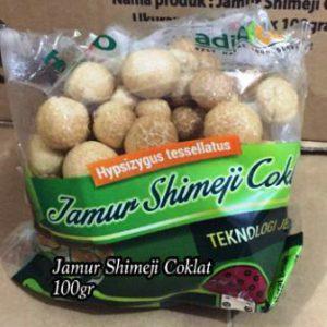 Harga Jamur Shimeji terbaru