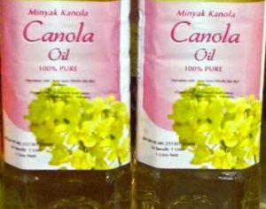Harga Minyak Canola Oil