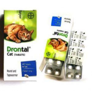Harga Drontal Cat