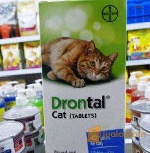 harga drontal cat di apotik