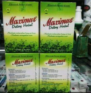harga maximus di apotik kimia farma