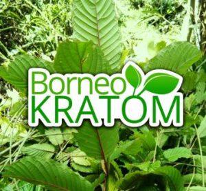 Borneokratom.shop