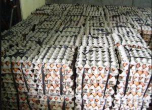 harga telur arboge hari ini