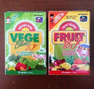 harga vegeblend junior untuk bayi