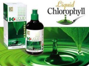 Harga Klorofil