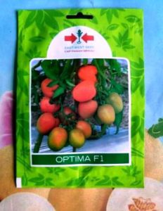 Harga Bibit Tomat Optima